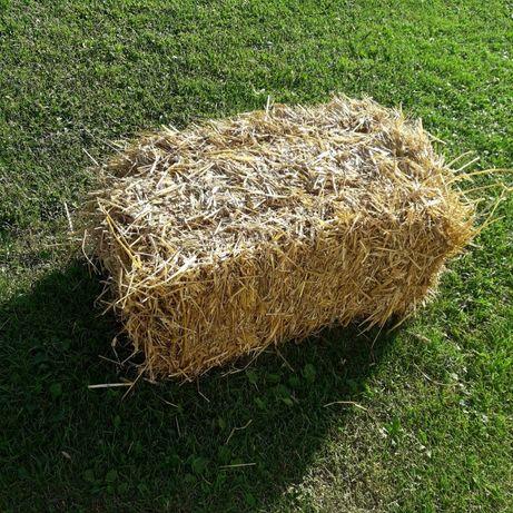 Продається солома з пшениці