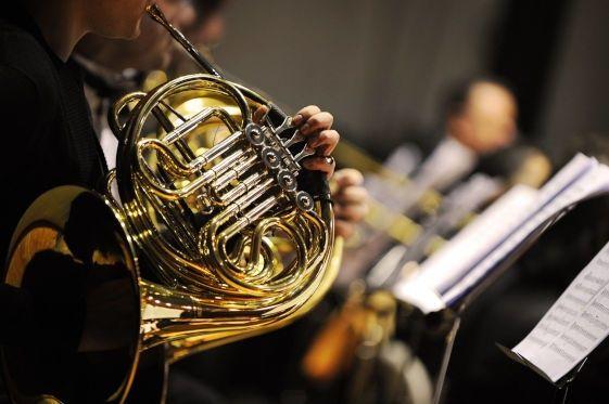 Валторнист в вокально-оркестровую капеллу.