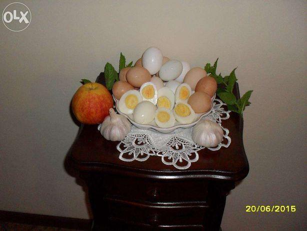 Jaja z ekologicznego certyfikowanego gospodarstwa ( dostawa )