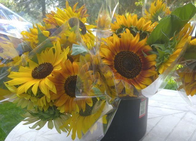 Kwiat słonecznika ozdobnego na ślub wesele chrzciny Kraków