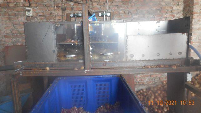 maszyna do zdmuchiwania łuski cebuli