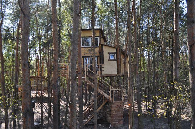 Domek letniskowy Nocleg w Willi na drzewie, domek nad jeziorem