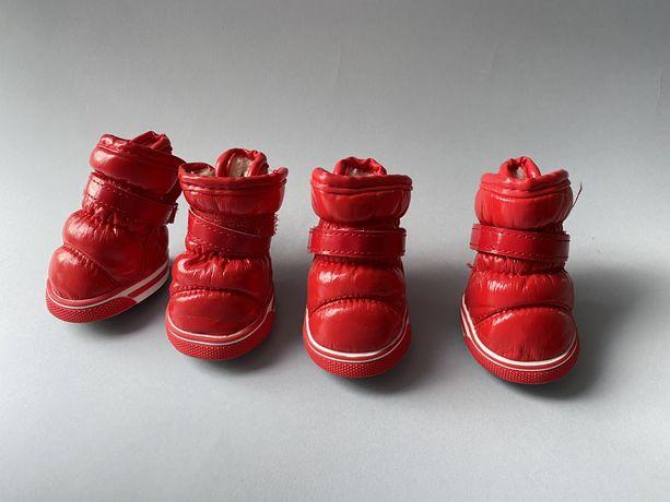 Обувь для собак дутики красные 5 размер