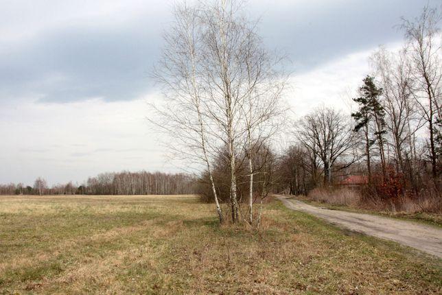 Prażmów, Kamionka, działka 19445m2,