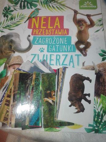 Naklejki Nela zagrożone gatunki zwierząt