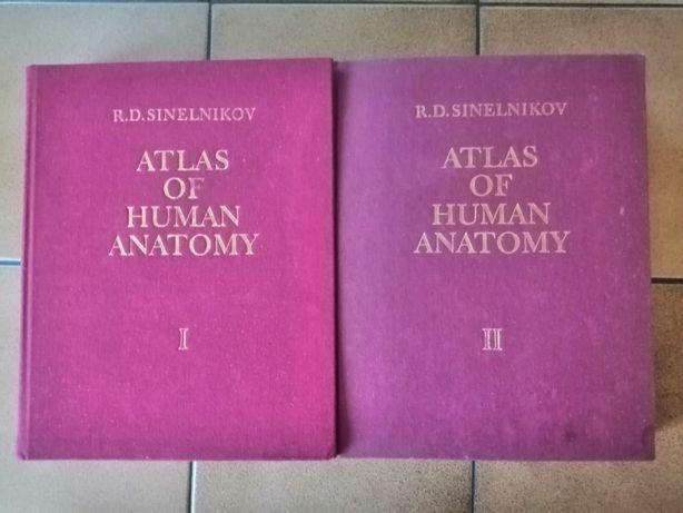 Atlas of Human Anatomy Vol I i II - R. D. Sinelnikov