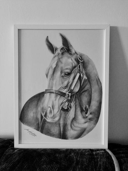 Obraz + ramka koń czarno biały Elbląg - image 1