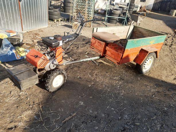 Fortschritt E 931.50 Traktorek, Dzik, Glebogryzarka
