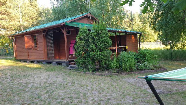 Domek nad jeziorem 4-6 osób gm. Wilczyn do wynajęcia 40m2 od 15.08