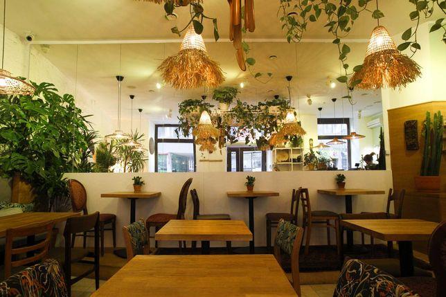 Lokal Gastronomiczny w Ścisłym Centrum