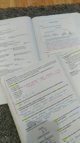 Biologia notatki maturalne