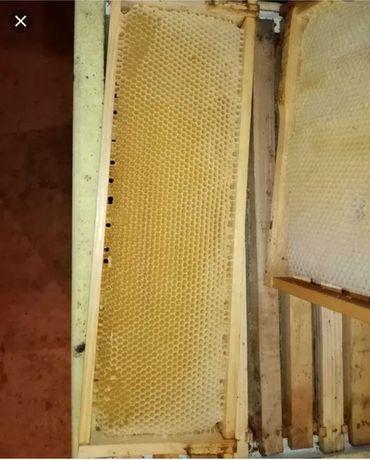 Сушь 145, рамка пчелиная.
