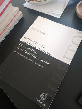 O princípio da não reversibilidade (Cristina Queiroz)