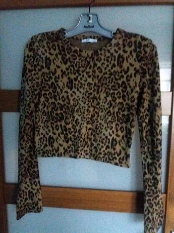 Krótka bluzka w panterkę Zara S