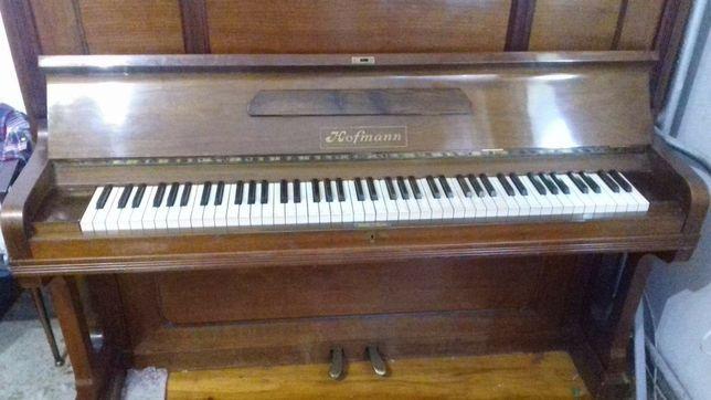 Pianino Hofmann