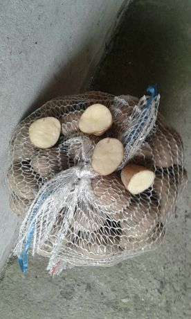 Ziemniaki irga jadalne z dostawą