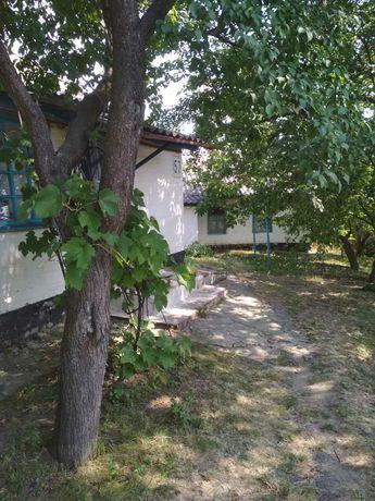 Продам будинок в смт. Велика Багачка