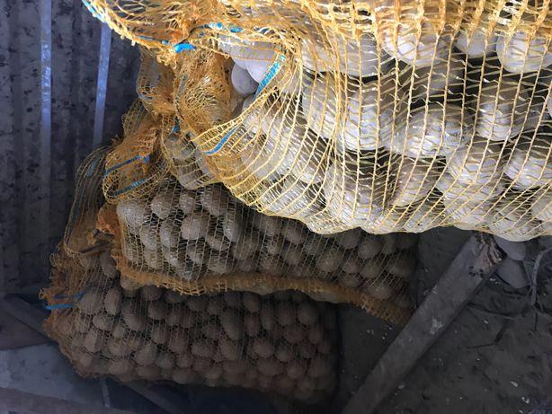 Pyszne ziemniaki, kartofle