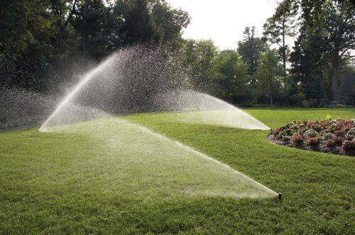 system nawadniający nawodnienie podlewanie kroplujące piękny trawnik