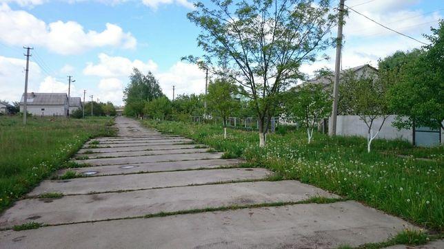 Продам участок 50 сот. в с. Томашівка, Фастівський район