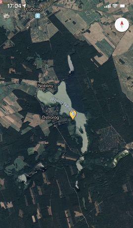 Działka Rekraacyjna  nad jeziorem w lesie Ostrorog Powiecie Drawski