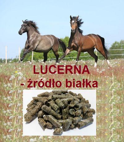 GRANULOWANA LUCERNA z domieszką traw i ziół dla koni, bydła, królików