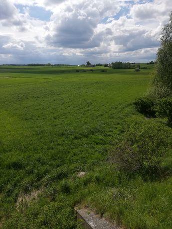 Wydzierżawię łąkę i ziemię rolną 3 ha Kranek