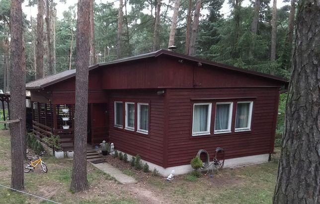 Dom drewniany za darmo do przeniesienia we własnym zakresie