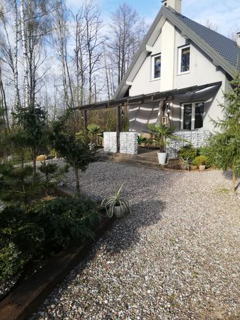 Sprzedam działkę z domkiem, ogrodem i oczkiem wodnym.