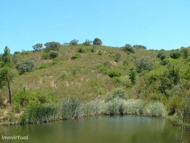 Terreno Misto em Santa Clara-a-Velha