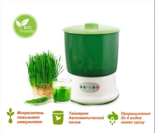 Проращиватель семян и зерен , теплица для семян ,зерно семена ростки