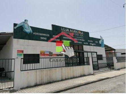 Armazém Industrial para venda em  Ponte de Sor
