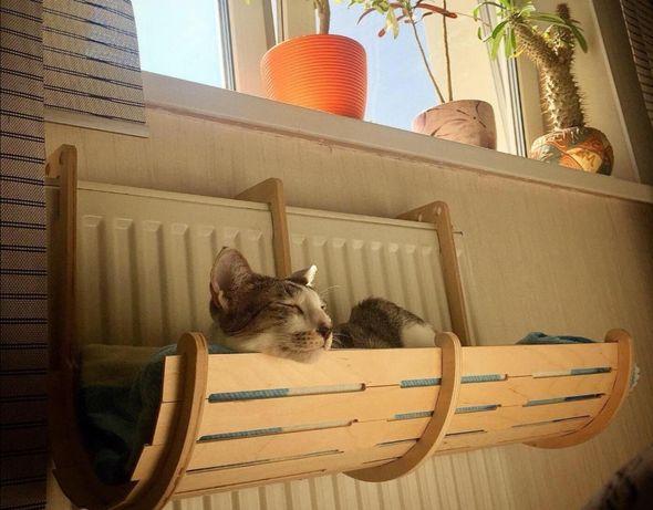 Drewniane legowisko dla kota