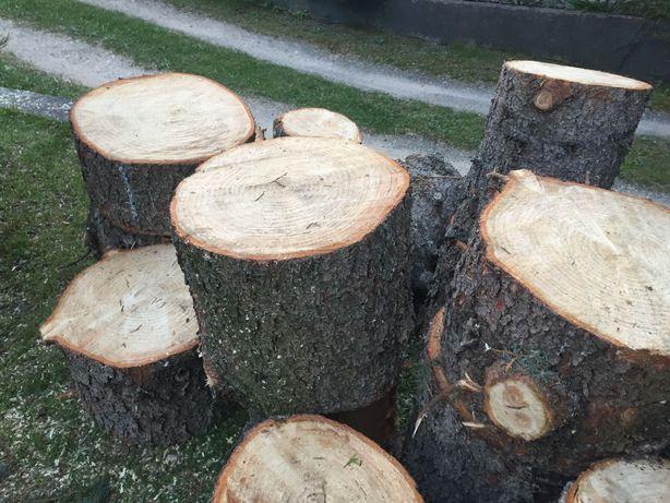 Drewniane pieńki ze świerka 15 szt