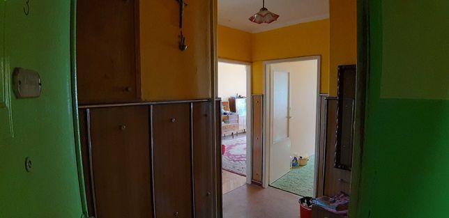 mieszkanie 2 pokojowe, Aleksandrow Lodzki