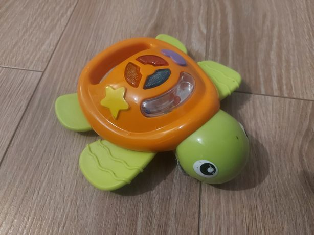 Żółw interaktywny