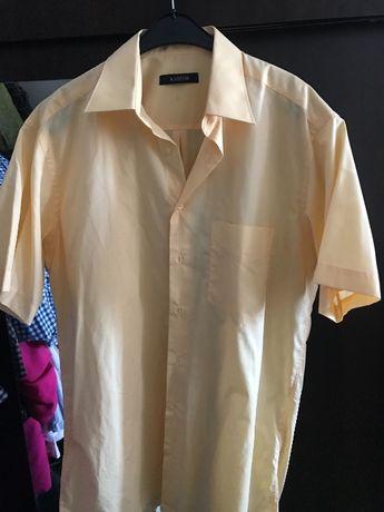 Koszule kastor