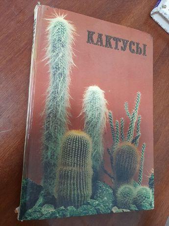 """Книга-альбом """"Кактусы"""""""