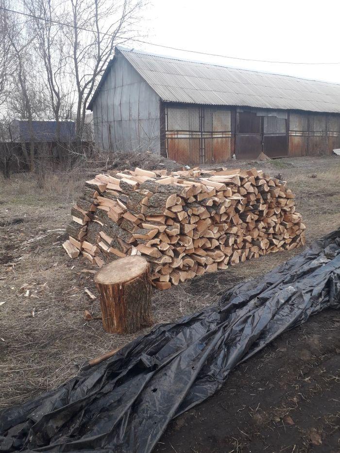 Дрова дуб, дубовые Харьков - изображение 1