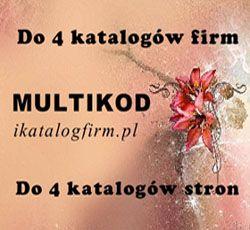 Multikod do katalogów firm z reklamą w social media