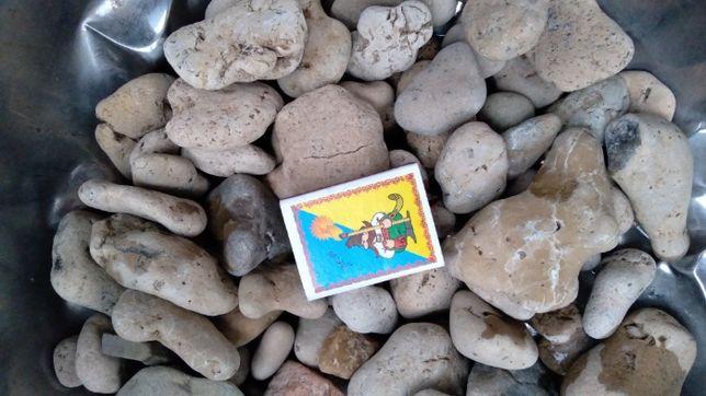 продам гальку для аквариума грунт морской камень