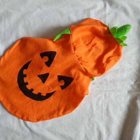 Костюм на Хеллоуин,на собаку,кошку, тыква