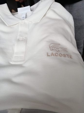 Polo lacoste 50 procent ceny