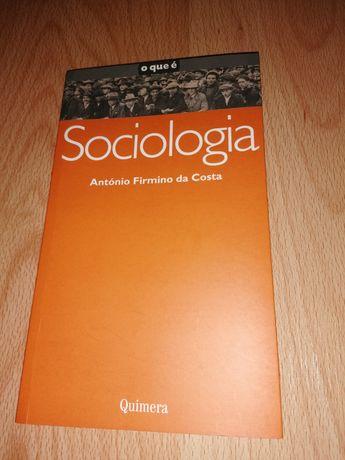 O que é a Sociologia?