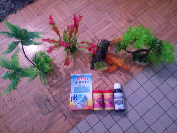 Plantas,testes, condicionador