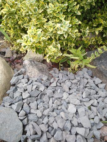 Grys bazaltowy Dekoracyjny