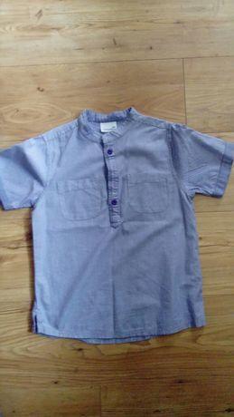 Koszula Chłopięca Coccodrillo Rozmiar 134 cm
