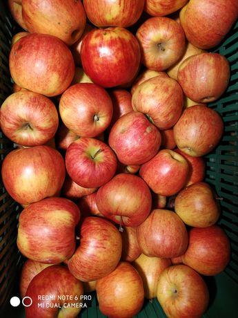 Sprzedam ładne jabłka deserowe