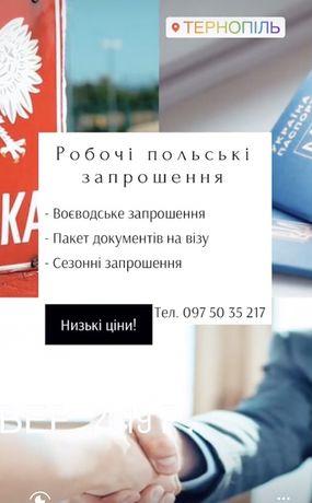 Віза Польська Запрошення Візова Підтримка