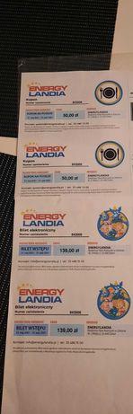 Bilety do Energy Ladni plus kupony na posiłek